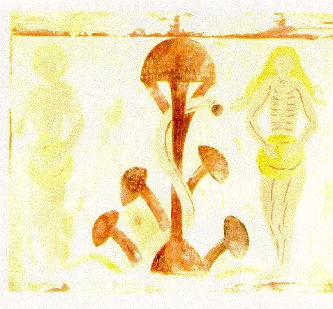 soma divine mushroom of immortality pdf